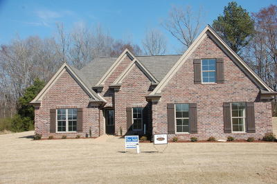 Tate County Single Family Home For Sale: 106 Eagle View Drive