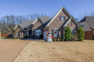 Desoto County Single Family Home For Sale: 5206 Garner Lane