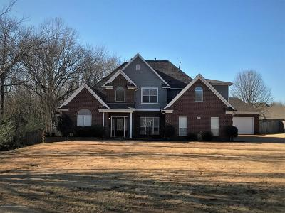 Desoto County Single Family Home For Sale: 4593 Jessica