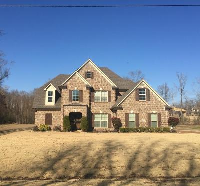 Desoto County Single Family Home For Sale: 9450 Church Road Extended