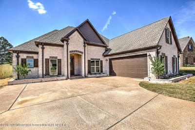 Desoto County Single Family Home For Sale: 3232 McKenna Way
