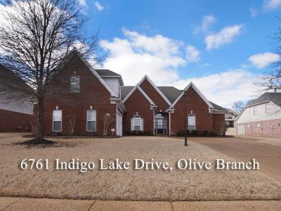 Desoto County Single Family Home For Sale: 6761 Indigo Lake Drive