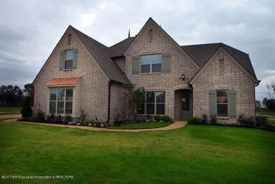 Olive Branch Single Family Home For Sale: 7069 E Hawks Crossing Drive