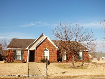 Desoto County Single Family Home For Sale: 8053 Green Valley Cove