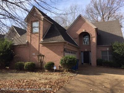 Desoto County Single Family Home For Sale: 6333 Cheyenne Drive