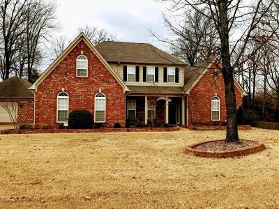 Olive Branch MS Single Family Home For Sale: $355,000