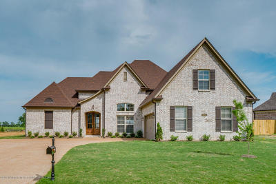 Southaven Single Family Home For Sale: 3692 Beech Tree Cove
