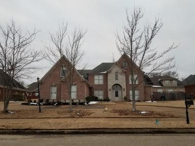 Olive Branch Single Family Home For Sale: 6775 Indigo Lake Drive