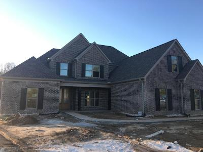 Olive Branch Single Family Home For Sale: 829 Highway 305