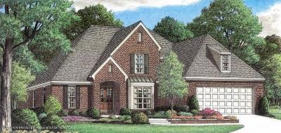 Olive Branch Single Family Home For Sale: 13393 Lapstone Lane