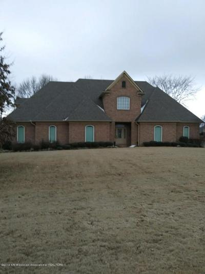 Olive Branch Single Family Home For Sale: 7887 Windersgate Circle