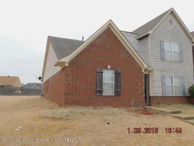 Horn Lake Single Family Home For Sale: 7365 Perrin