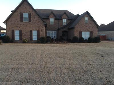 Olive Branch Single Family Home For Sale: 4761 Waterstone