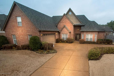 Southaven Single Family Home For Sale: 3146 Central Parkway