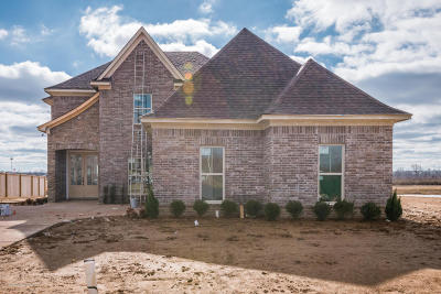 Olive Branch Single Family Home For Sale: 6551 Broadwing Circle West