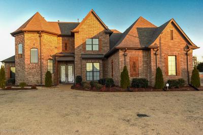 Olive Branch Single Family Home For Sale: 4857 Davis Grove Boulevard