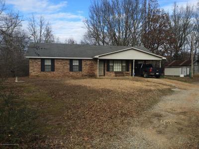 Byhalia Single Family Home For Sale: 509 Tyson Road