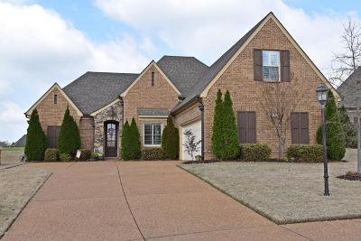 Olive Branch Single Family Home For Sale: 6832 Dakota Circle