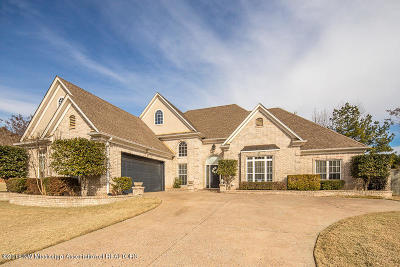 Southaven Single Family Home For Sale: 5344 Meadow Pointe Drive