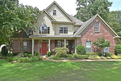 Olive Branch Single Family Home For Sale: 9184 Austin Drive