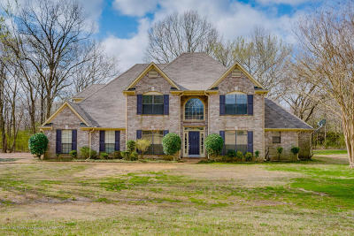 Olive Branch Single Family Home For Sale: 8531 Windersgate Drive