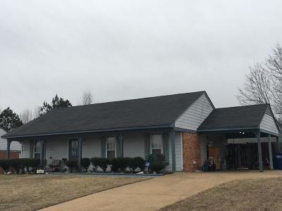 Horn Lake Single Family Home For Sale: 4167 Blackstone Drive