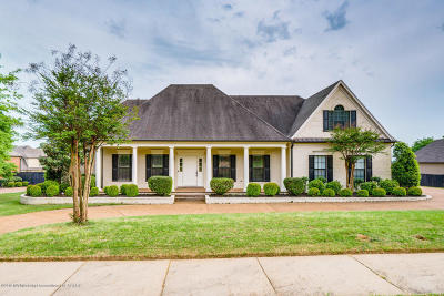 Olive Branch Single Family Home For Sale: 13921 River Grove Lane