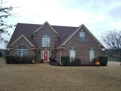 Southaven Single Family Home For Sale: 5390 Doe Lane