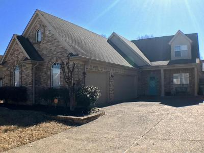 Southaven Single Family Home For Sale: 2697 Mariah Lane