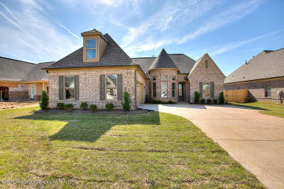 Southaven Single Family Home For Sale: 3562 W Enclave Drive