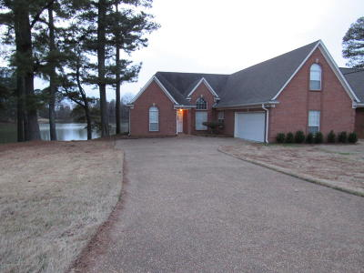 Southaven Single Family Home For Sale: 4485 Nicholas Dr