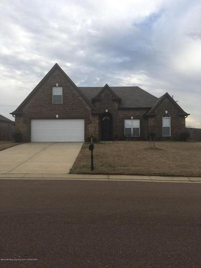 Southaven Single Family Home For Sale: 2655 Blue Ridge Drive