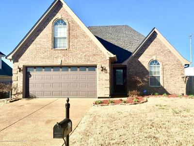 Southaven Single Family Home For Sale: 4230 Sweet Flag Loop