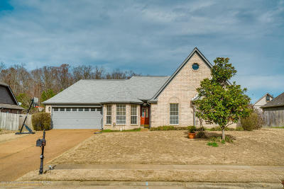 Desoto County Single Family Home For Sale: 10858 Lexington Drive