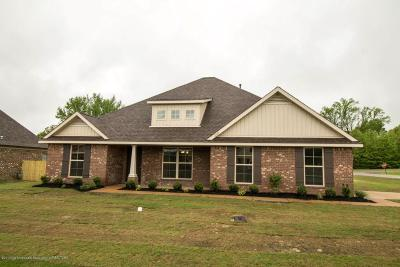 Southaven Single Family Home For Sale: 2640 Madeline Lane