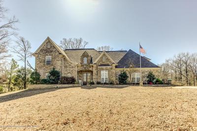 Byhalia Single Family Home For Sale: 2819 Allyson Gene Cove