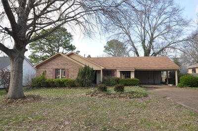 Horn Lake Single Family Home For Sale: 1790 Greeno