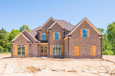 Southaven MS Single Family Home For Sale: $294,900