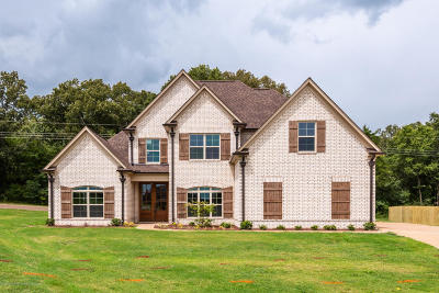 Southaven MS Single Family Home For Sale: $294,000
