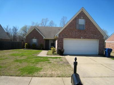 Desoto County Single Family Home For Sale: 7193 Hurt Road