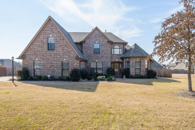 Olive Branch Single Family Home For Sale: 6743 Payne Lane