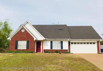 Desoto County Single Family Home For Sale: 9954 Lacee Lane