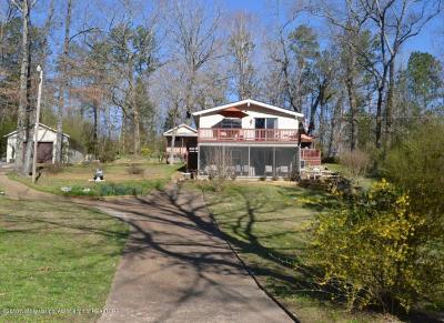 Benton County Single Family Home For Sale: 389 Lakeshore Drive