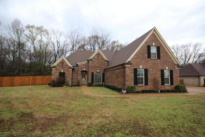 Desoto County Single Family Home For Sale: 3693 Aniston Drive