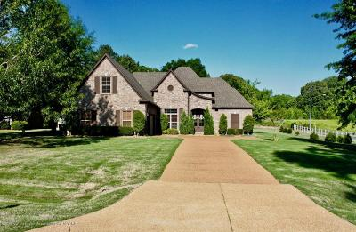 Desoto County Single Family Home For Sale: 3030 Marcia Louise Drive