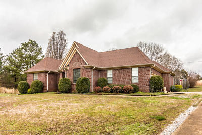 Olive Branch Single Family Home For Sale: 8940 Jones Rd