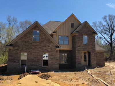 Desoto County Single Family Home For Sale: 517 Walkers Way