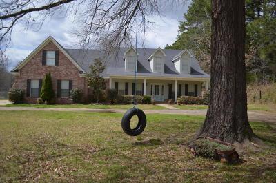 Desoto County Single Family Home For Sale: 273 S Malone Road