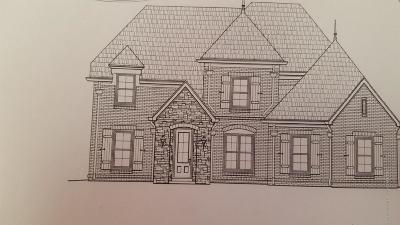 Desoto County Single Family Home For Sale: 2290 Mason
