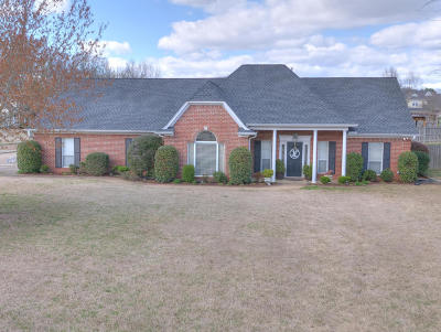 Olive Branch Single Family Home For Sale: 6538 Timber Oaks